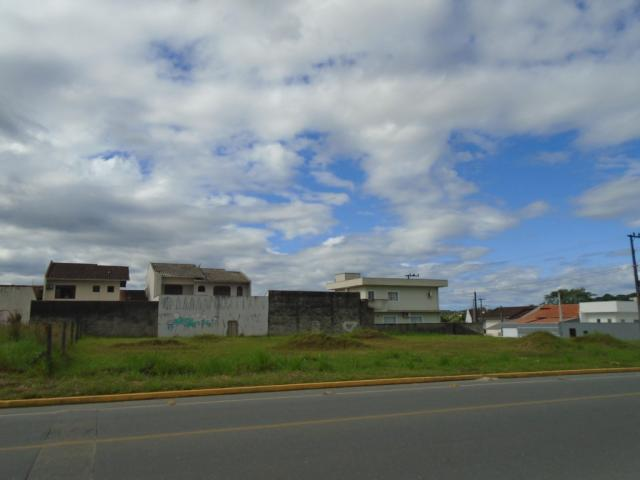 Terreno para alugar em Santa catarina, Joinville cod:08122.003 - Foto 12