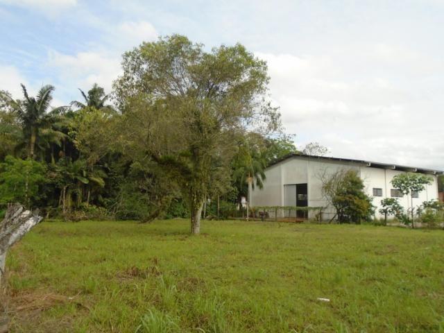 Terreno para alugar em Pirabeiraba, Joinville cod:00444.008 - Foto 2