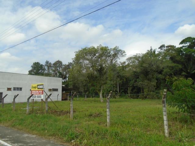 Terreno para alugar em Pirabeiraba, Joinville cod:00444.008 - Foto 5