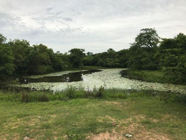 Fazenda em Buritizeiro - Foto 9