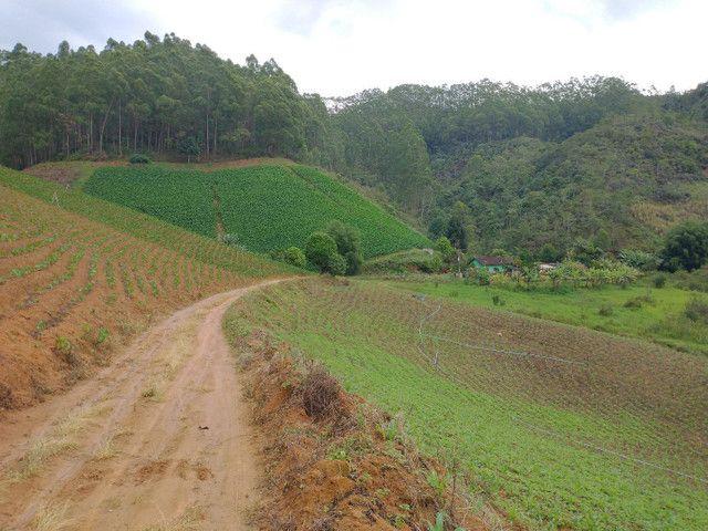 Propriedades 10 alqueires Araguaia - Foto 2