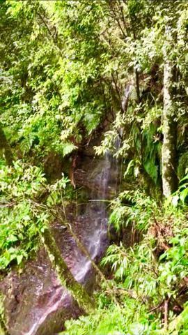 Chácara com cachoeira em Urubici - Foto 8