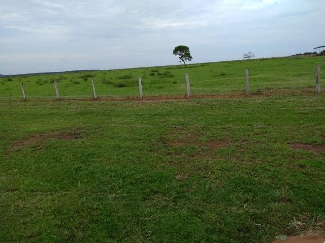 Fazenda 9.900 ha São Felix Do Araguaia - Foto 4
