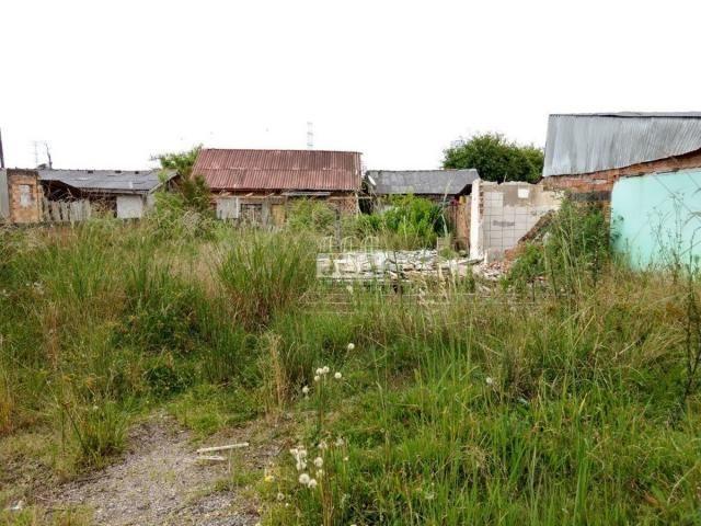 Terreno à venda em Borda do campo, São josé dos pinhais cod:11546.001 - Foto 3