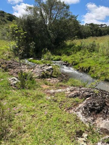 Fazenda 86 hectares Cazuza Ferreira - Foto 6