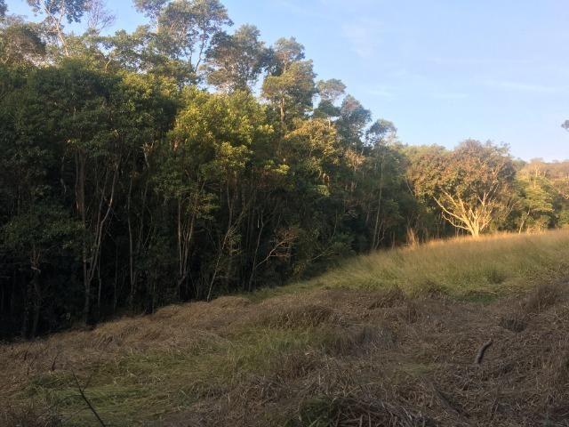GE compre seu terreno plano para começo do ano por apenas: R$1.000 de entrada 500m2. - Foto 4