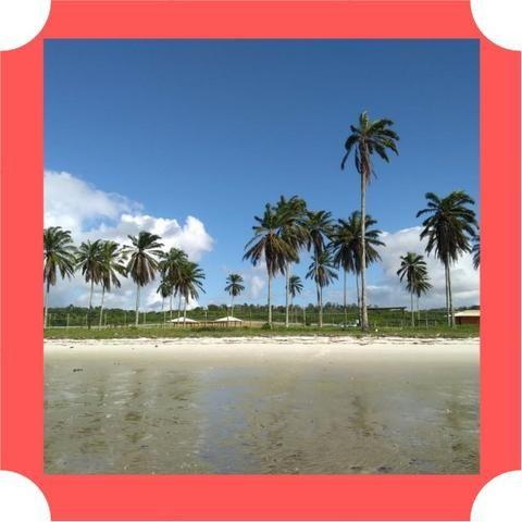 Lotes em Saubara, Costa de Itapema- Pagamento Facilitado, Praia Privativa - Foto 12