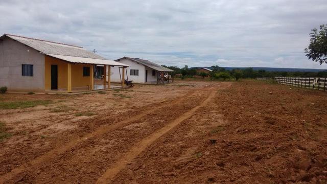 Vendo Fazenda com 1.523 Hectares na região do Manso - Foto 8