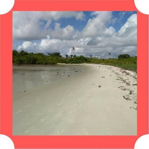 Lotes em Saubara, Costa de Itapema- Pagamento Facilitado, Praia Privativa - Foto 4