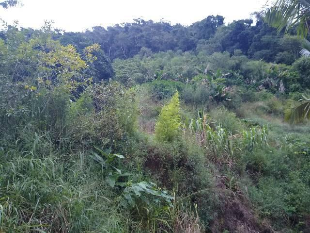 Sitio tijuco preto 55 mil metros - Foto 7