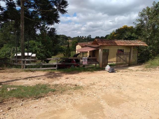REF 2456 -Chácara Excelente na Serrinha, com 10.000 m², com uma casa - Foto 11