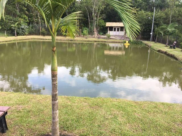 Chácara em Morretes Paraná (leia o anúncio!) - Foto 19
