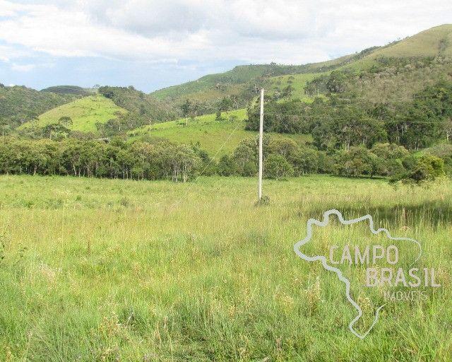 Campo Brasil Imóveis, realizando seu sonho rural! Fazenda de 84.4 hectares em Carvalhos-MG - Foto 6