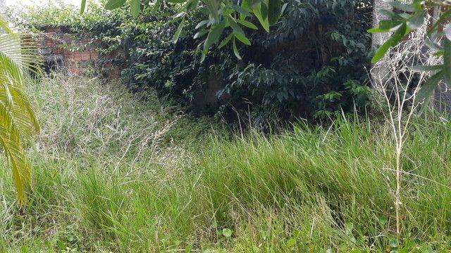 Jardineiro e pequenos reparos - Foto 4
