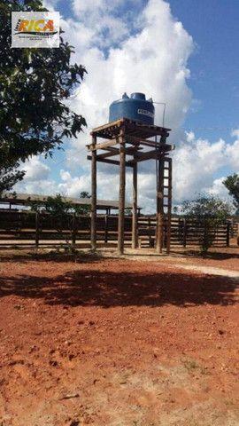 Fazenda a venda com 1.151 hectares no município de Canutama- AM - Foto 13