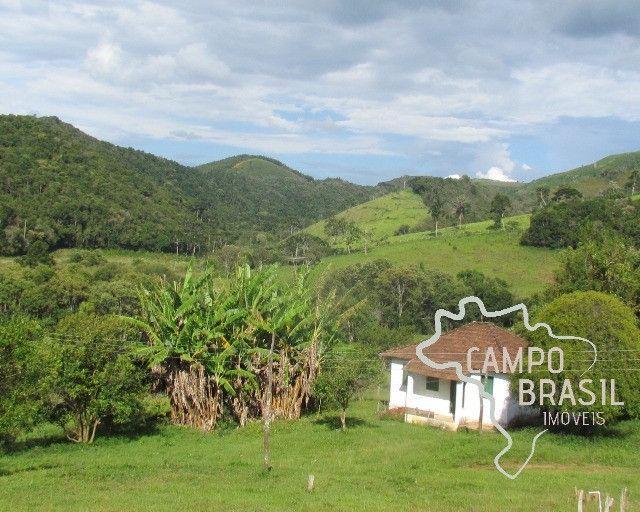 Campo Brasil Imóveis, realizando seu sonho rural! Fazenda de 84.4 hectares em Carvalhos-MG - Foto 10