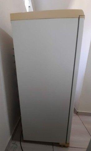 Vendo freezer Electrolux em perfeita condições.$700  - Foto 2