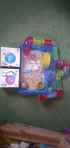 Quero vender esta gaiola para hamster com 2 bolas - Foto 3