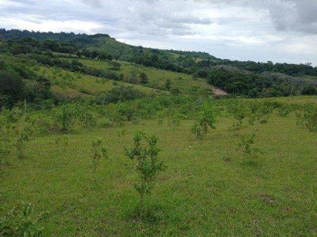 Sítio, Chácara a Venda em Porangaba e Região 48.400 m², 2 Alqueres, Zona Rural - Porangaba - Foto 7