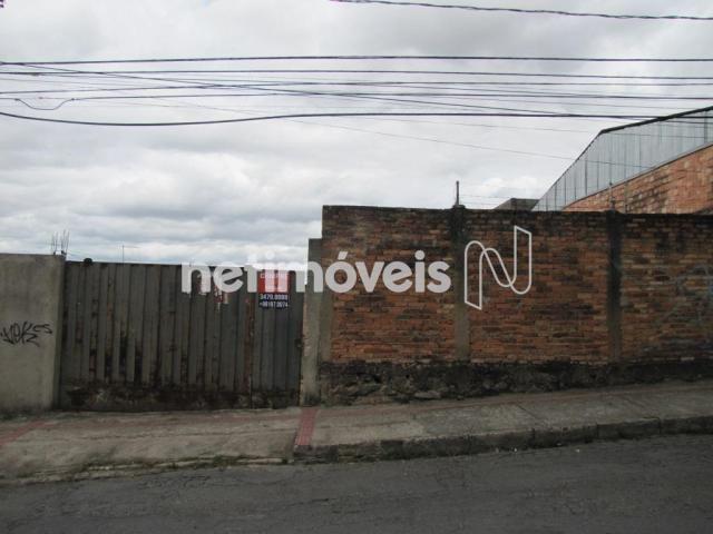 Terreno à venda em São francisco, Belo horizonte cod:717333 - Foto 12