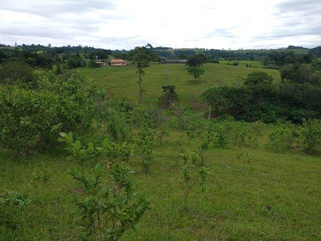 Sítio, Chácara a Venda em Porangaba e Região 48.400 m², 2 Alqueres, Zona Rural - Porangaba - Foto 9