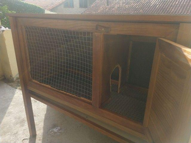 Casinha de coelho - Foto 2