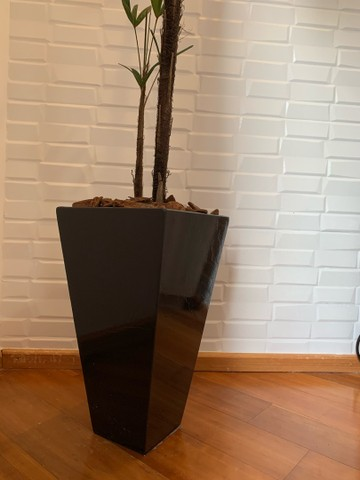 Vaso com planta  - Foto 4