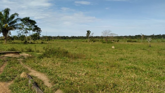 Fazenda a venda Com 746 equitares *parcelo  - Foto 4