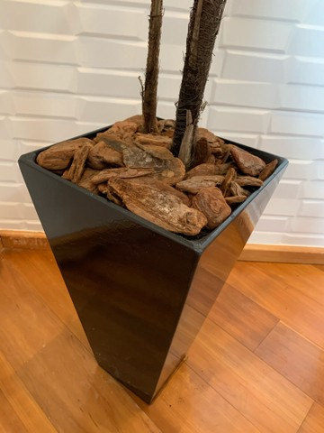 Vaso com planta  - Foto 3