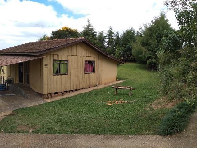REF 2456 -Chácara Excelente na Serrinha, com 10.000 m², com uma casa - Foto 10