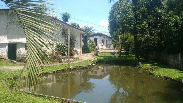 Chácara em São Jose dos pinhais - Foto 3