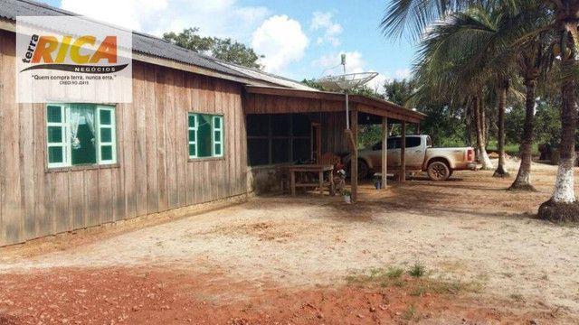Fazenda a venda com 1.151 hectares no município de Canutama- AM - Foto 11