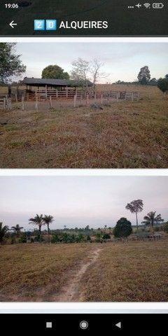Terras, sítios, fazendas e chácara pra vender - Foto 4