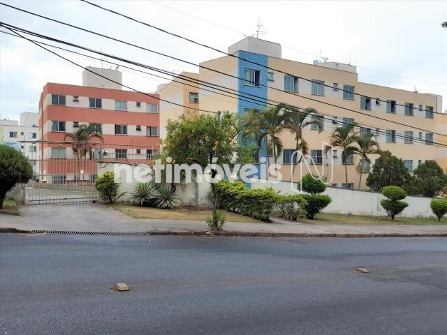 Apartamento à venda com 2 dormitórios cod:776574 - Foto 18