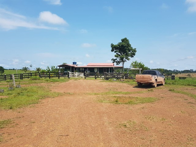 Vendo  fazenda no apui - Foto 4