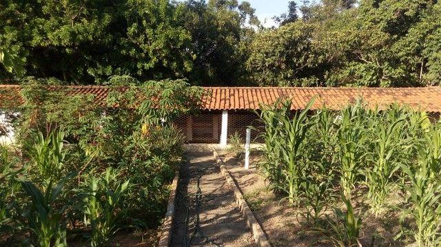 Chácara para venda com 15000 metros quadrados com 4 quartos em Centro - Porangaba - SP - Foto 15