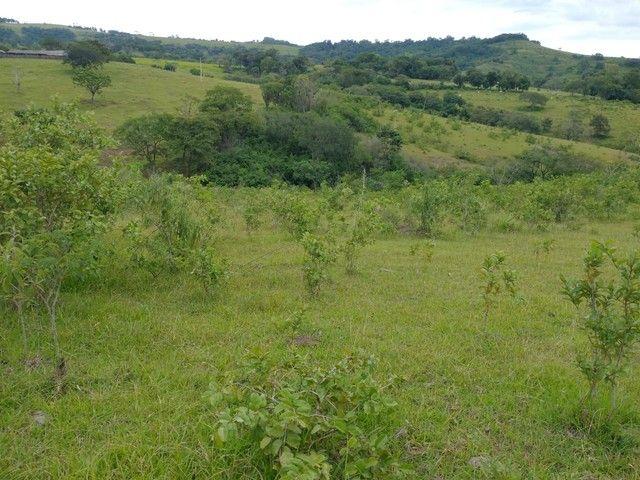 Sítio, Chácara a Venda em Porangaba e Região 48.400 m², 2 Alqueres, Zona Rural - Porangaba - Foto 19