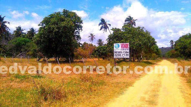 Lotes Parcelado - Ilha de Santa Rita 5mim de Maceió - Foto 3
