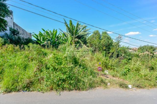 Terreno à venda em Gralha azul, Fazenda rio grande cod:151562 - Foto 16