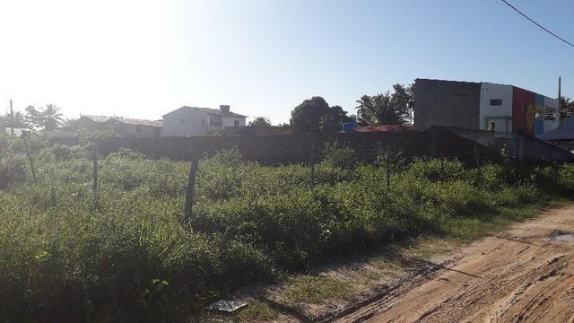 Terreno massagueira - Foto 4