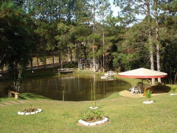 Chácara à venda em Miringuava, São josé dos pinhais cod:12972.001 - Foto 3