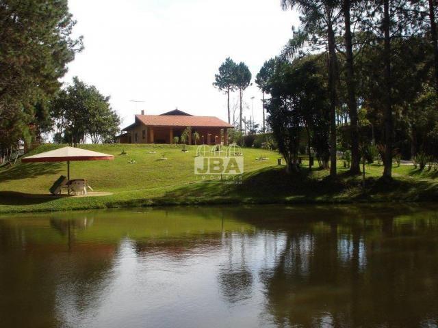Chácara à venda em Miringuava, São josé dos pinhais cod:12972.001 - Foto 6