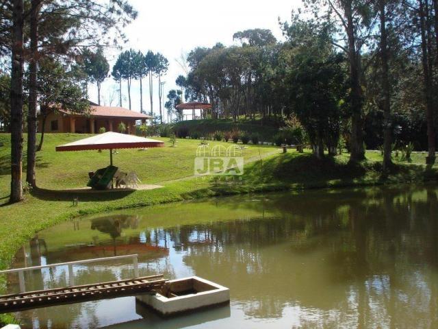 Chácara à venda em Miringuava, São josé dos pinhais cod:12972.001 - Foto 4