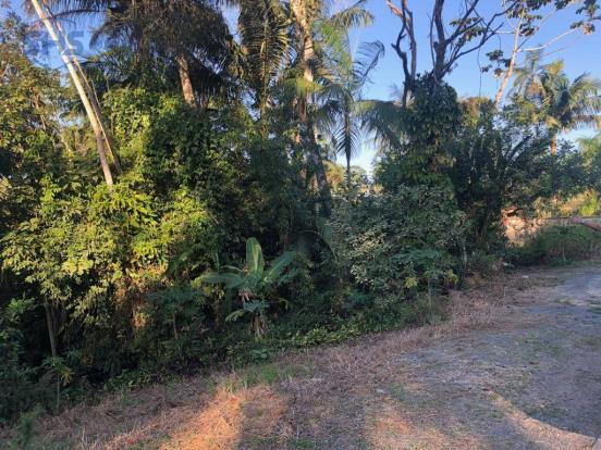 Terreno à venda, 600 m² por r$ 350.000 - bom retiro - blumenau/sc - Foto 3