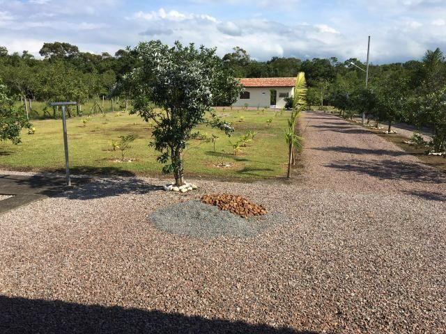 Chácara em Morretes Paraná (leia o anúncio!) - Foto 16