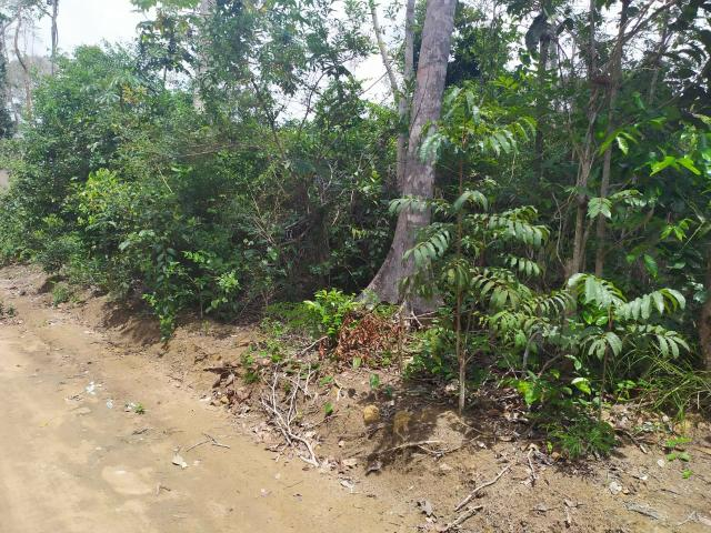 Terreno à venda Trancoso, Bahia - Foto 4