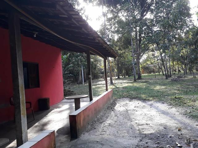 SÍTIO com igarapé - Foto 6