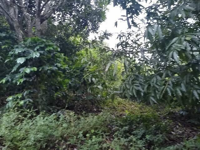 Sitio tijuco preto 55 mil metros - Foto 6