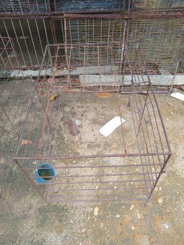 Arejadores de ferro para galos