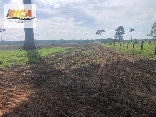 Fazenda a venda com 1.151 hectares no município de Canutama- AM - Foto 4